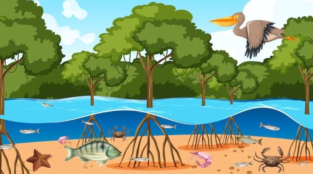 Scena della foresta di mangrovie di giorno con animali
