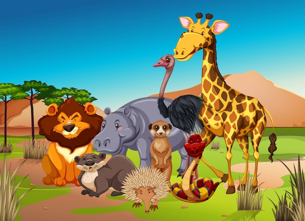 Много животных в траве поля