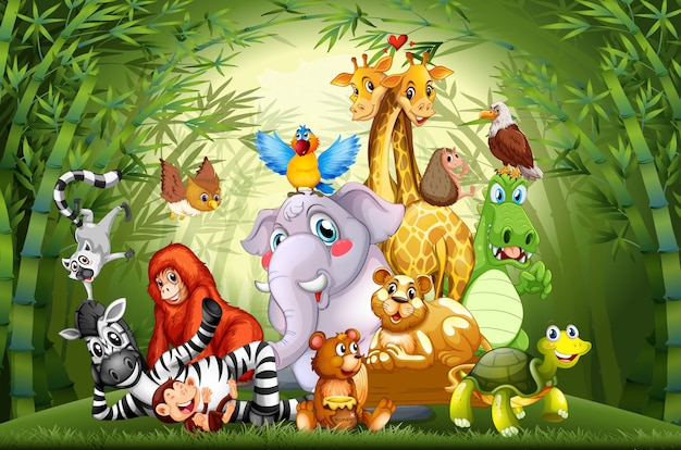 Many cute animals in bamboo forest