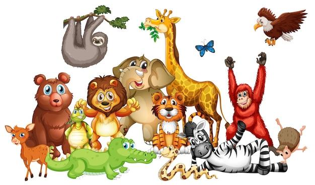 Многие милые животные на белом фоне