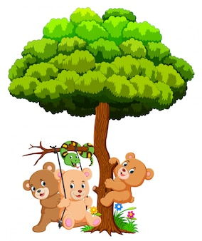 Many cute baby bears and snake playing under tree