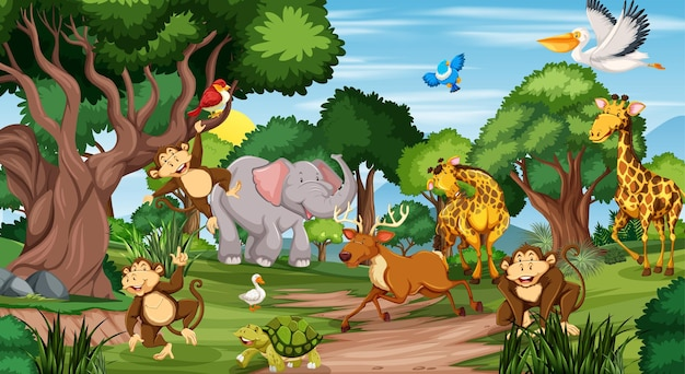 Many different animals in the forest scene