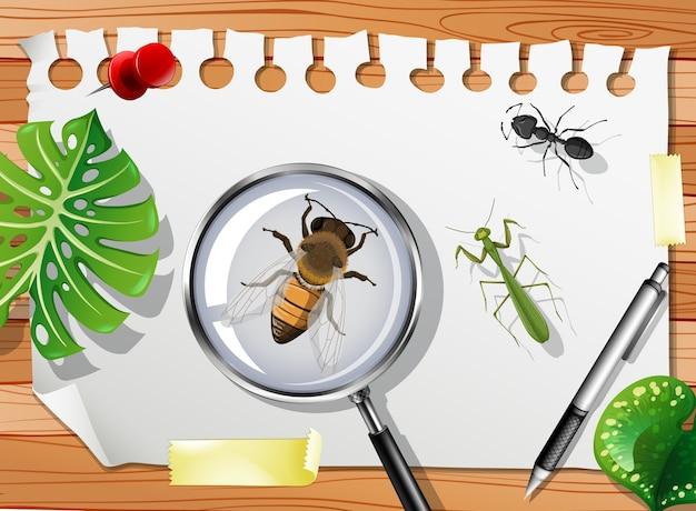 Крупным планом много разных насекомых на столе