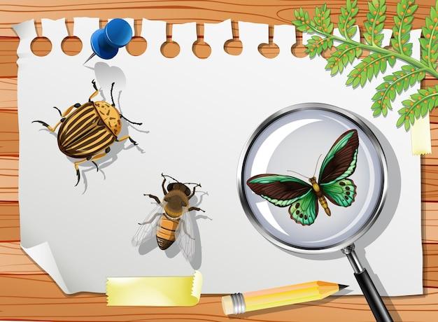 테이블에 많은 다른 곤충을 닫습니다.