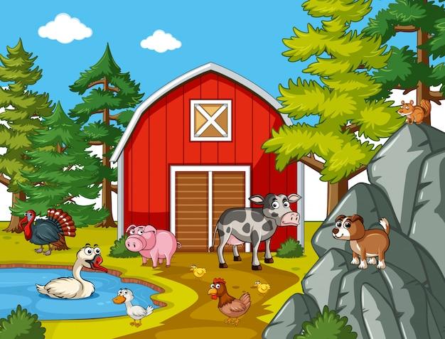 Many farm animals in the farm