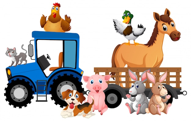 Many farm animals riding tractor on white
