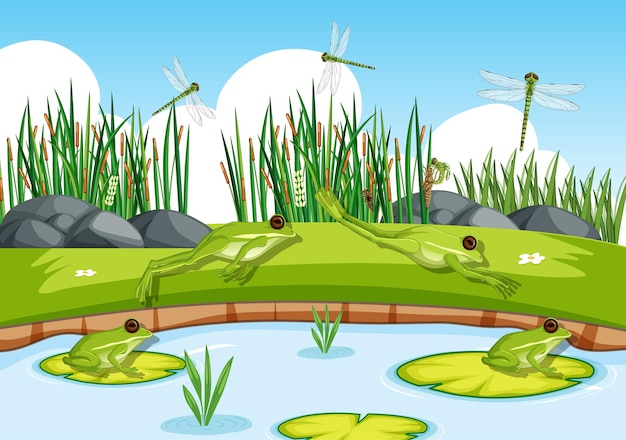 Many green frogs and dragonfly in the pond scene