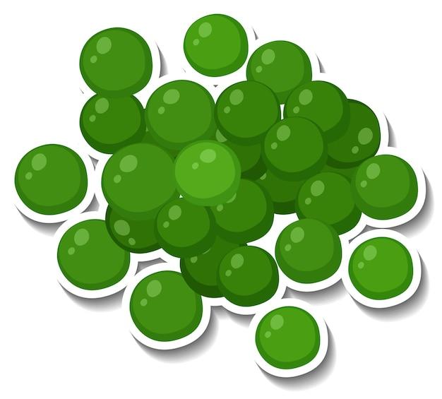 白い背景の上の多くの緑の球