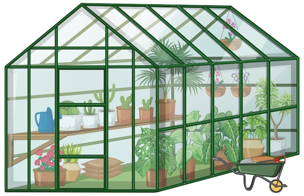 Many plants in greenhouse with glass wall and wheelbarrow on white background