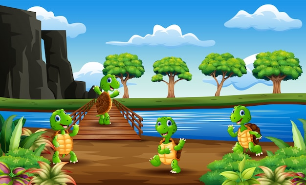 Many turtle across the wooden bridge
