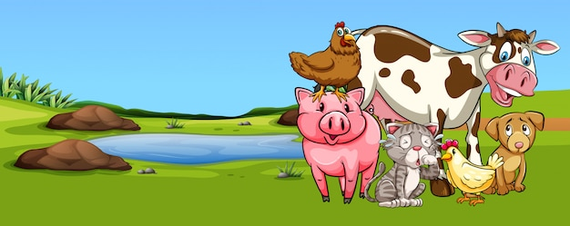 Many types of animal on farmyard