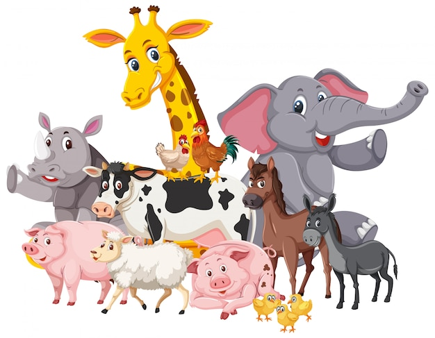 Many wild animals and farm animals