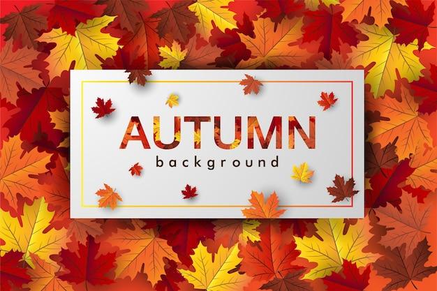 カエデの葉の秋のバナー