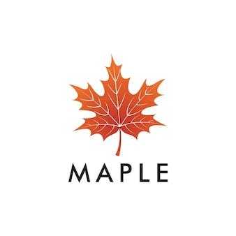 Maple leaf logo design template