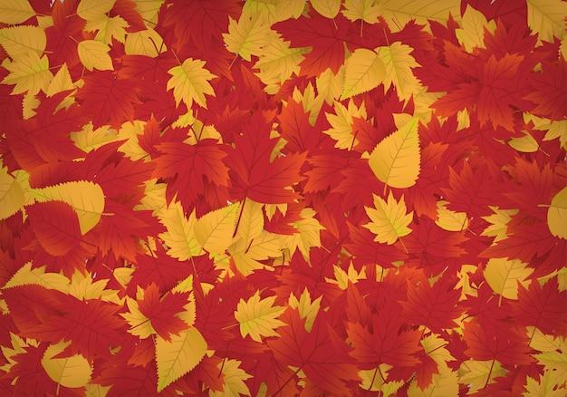Фон из кленовых листьев