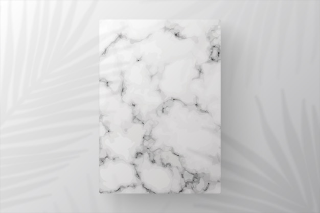 Marble showcase podium with shadow leaves
