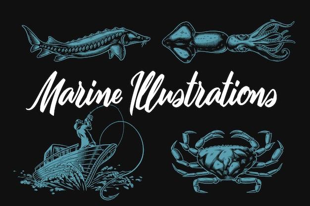 Морские иллюстрации осетровых, кальмаров, крабов и рыбаков на лодке