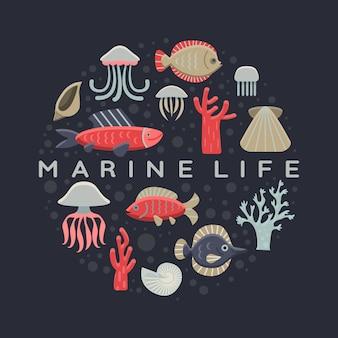 海洋生物の背景