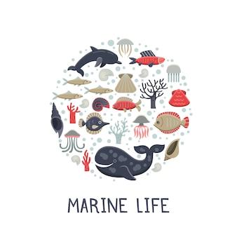 海洋生物の丸い背景