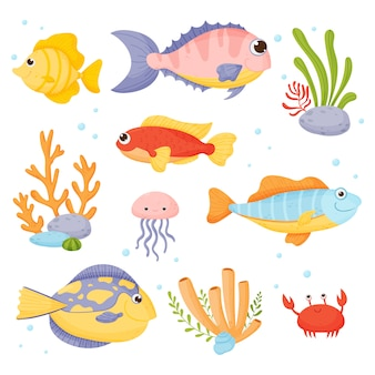 Marine life. set in cartoon style isolated on white background.