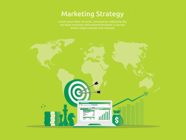 Marketing strategy and business analysis audit with charts