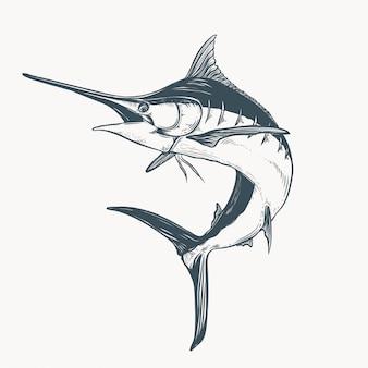 Marlin drawing illustration