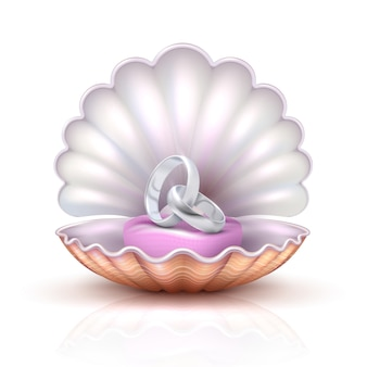 Marriage rings on realistic seashell, vector luxury silver wedding
