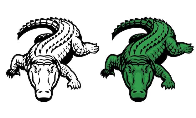 Mascot of salt water crocodile in whole body