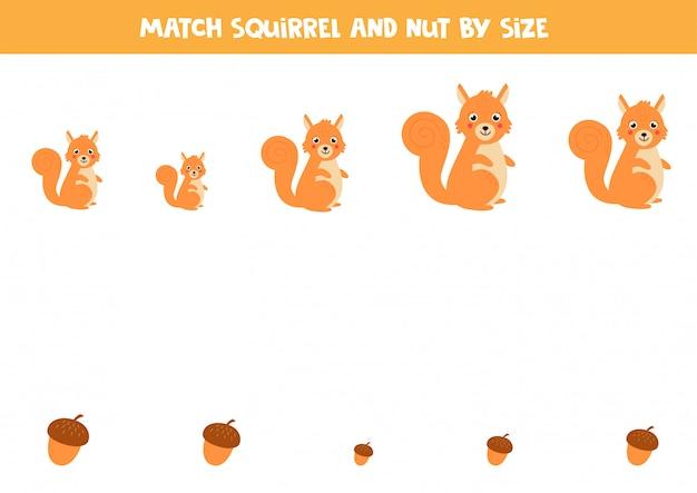 Подходим белку и орехи по размеру. рабочий лист для детей.