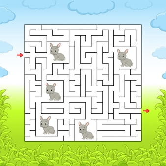 Maze, game for kids
