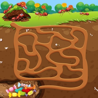 Maze with ants and candy concept