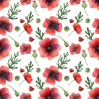 Meadow poppy flowers and buds seamless pattern