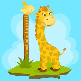 Измерение высоты жирафа