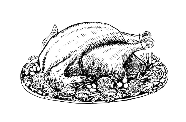 白い背景の上の肉チキン手描きイラスト