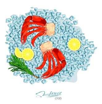 Meat crab with rosemary and lemon on ice cubes vector illustrationin cartoon style