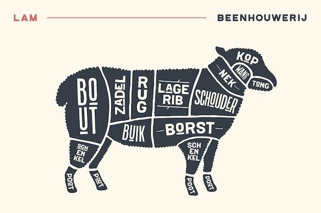 肉切り。肉屋の図とスキーム-子羊。オランダ語のテキストで活版印刷のビンテージ手描き。