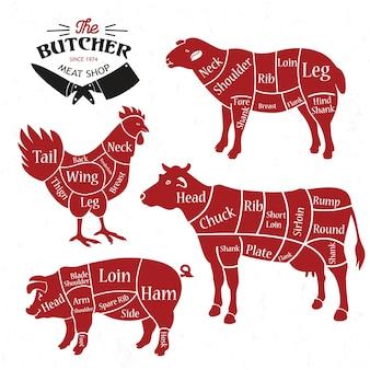 Meat cuts.