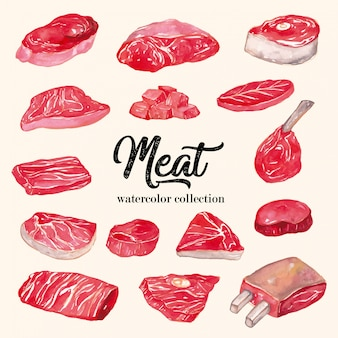 Meat watercolor collection