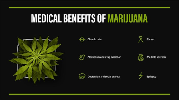 마리화나의 의료 혜택, 인포그래픽이 있는 검은색 포스터, 냄비에 대마초 덤불. 의료용 마리화나의 이점