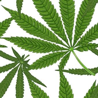 医療大麻マリファナの葉、手描きのシームレス パターン