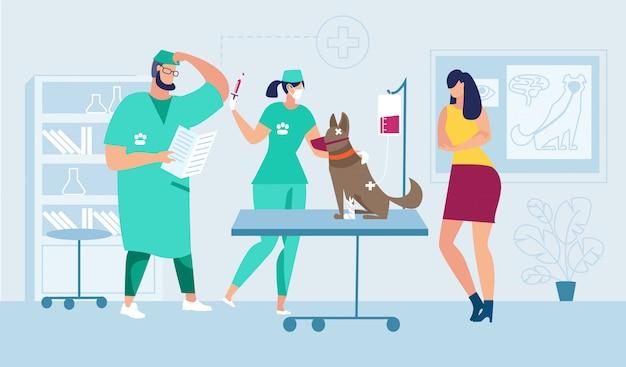 다친 애완 동물을위한 의학적 도움