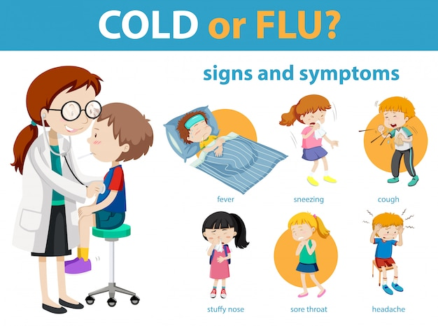 Medical infographic of cold or flu symptoms