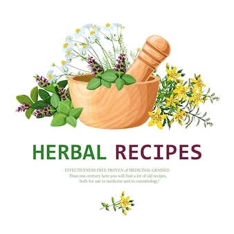Medicinal herbs in mortar illustration