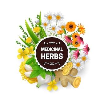 Medicinal natural healing plants