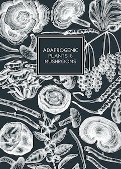 약용 식물과 버섯 손으로 스케치 그림 adaptogenic 허브 디자인