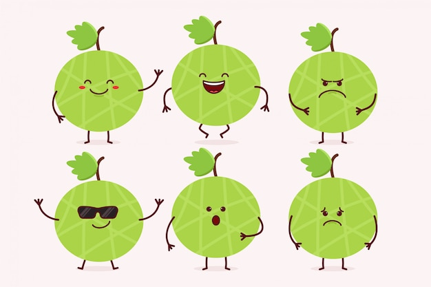 Melon fruit character set