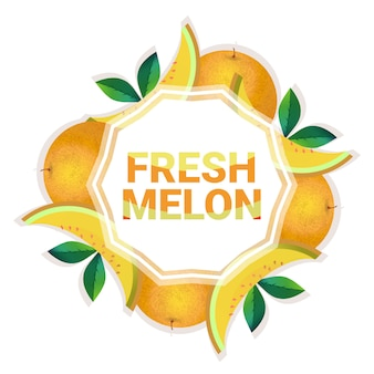 Melon fruit colorful circle copy space organic over white pattern background