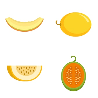 Melon icons set