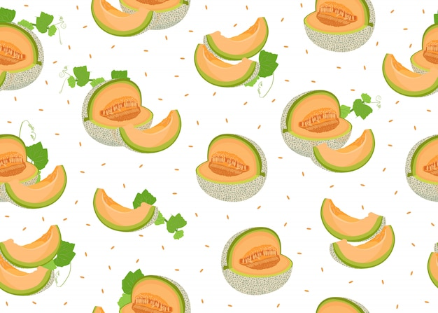 Melon slice seamless pattern