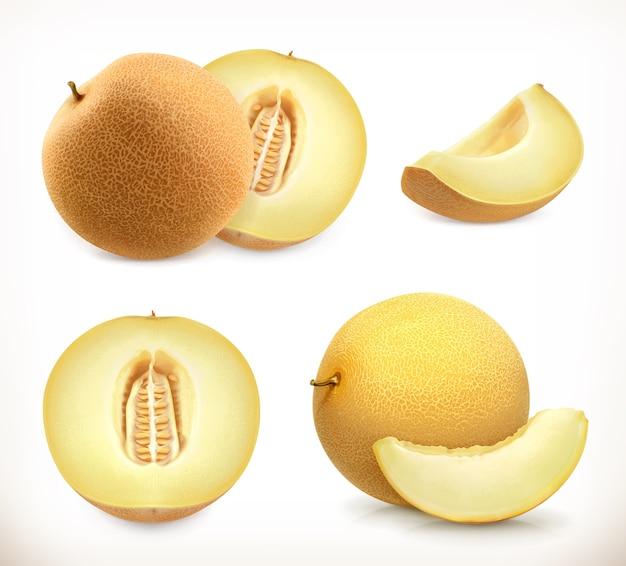 Дыня. набор иконок сладких фруктов. реалистичная иллюстрация